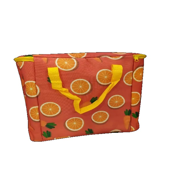 Large Capacity Picnic Insulated Lunch Bag